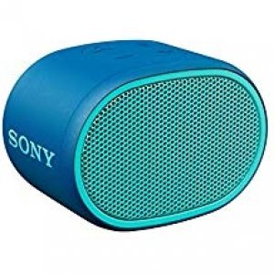 SONY Portable Bluetooth Speaker - Blue-0